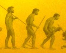 Homo Administrativus