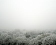 Despre bucuria de iarnă